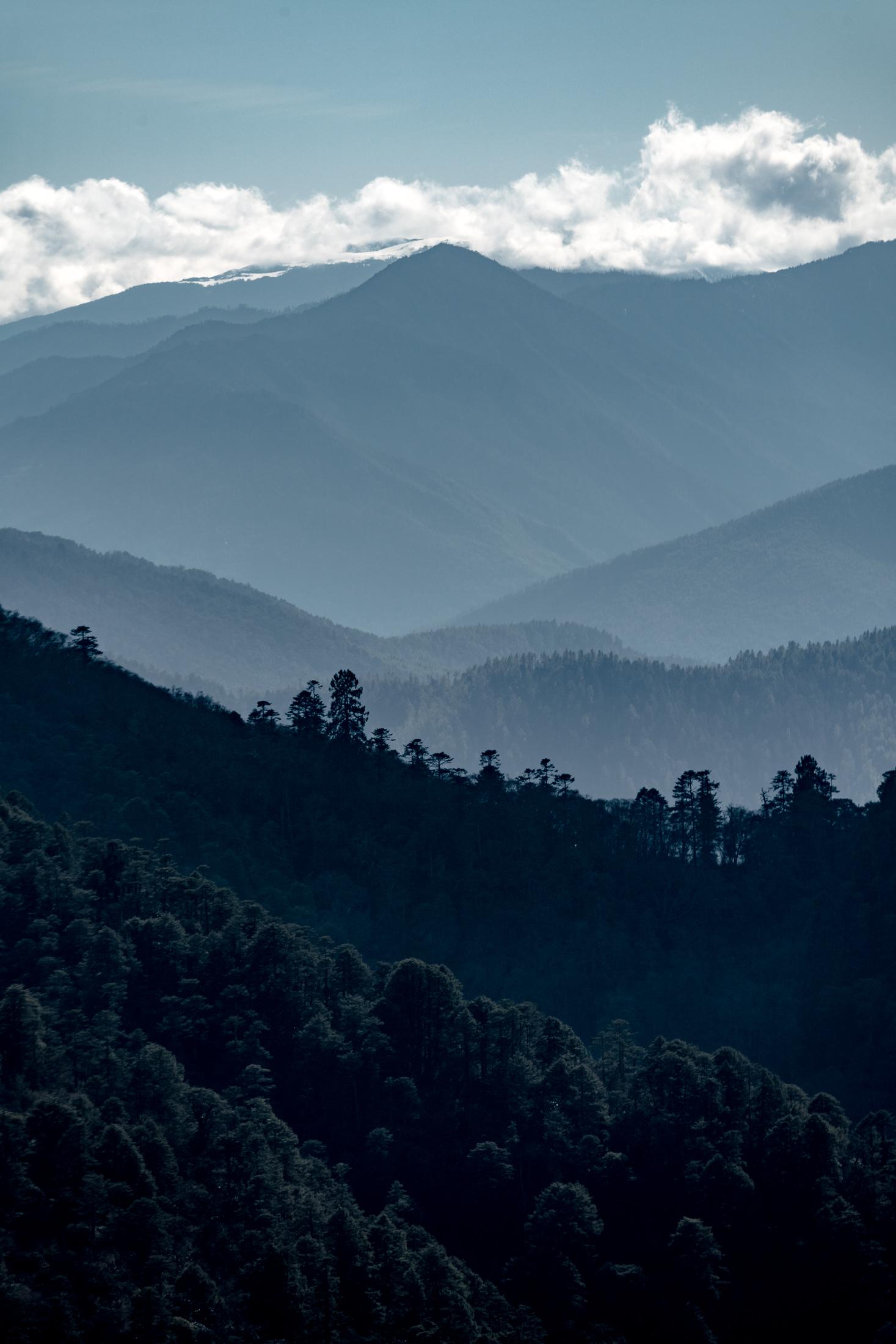 2019.04.07_LHO Bhutan_7874_2200px.jpg