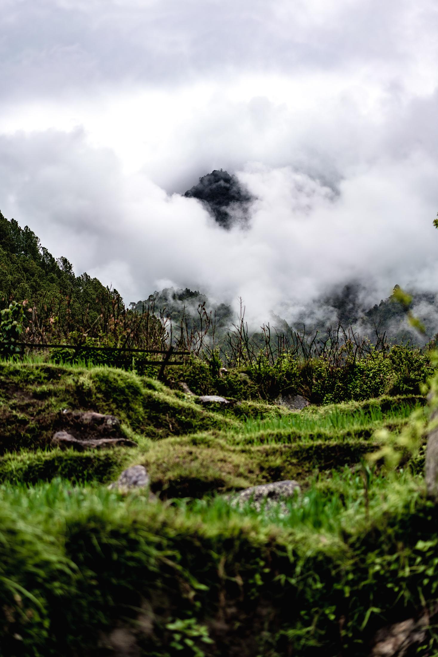 2019.04.07_LHO Bhutan_8264_2200px.jpg