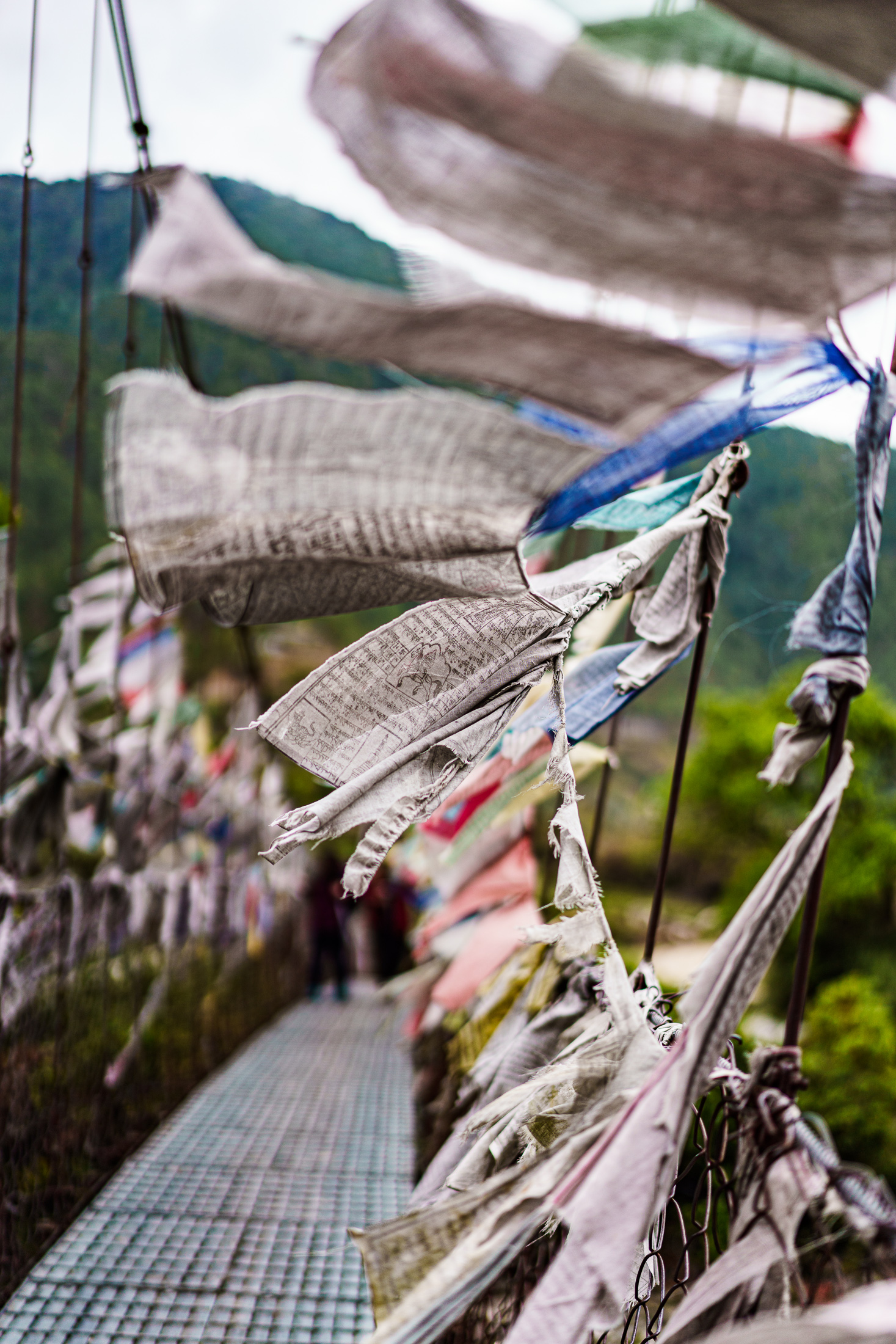 2019.04.07_LHO Bhutan_8547_2200px.jpg