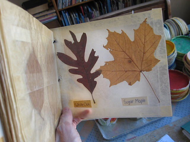 My first leaf book that I made when I was in 4th grade - and saved for all these years!