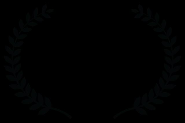 IL Film Festival