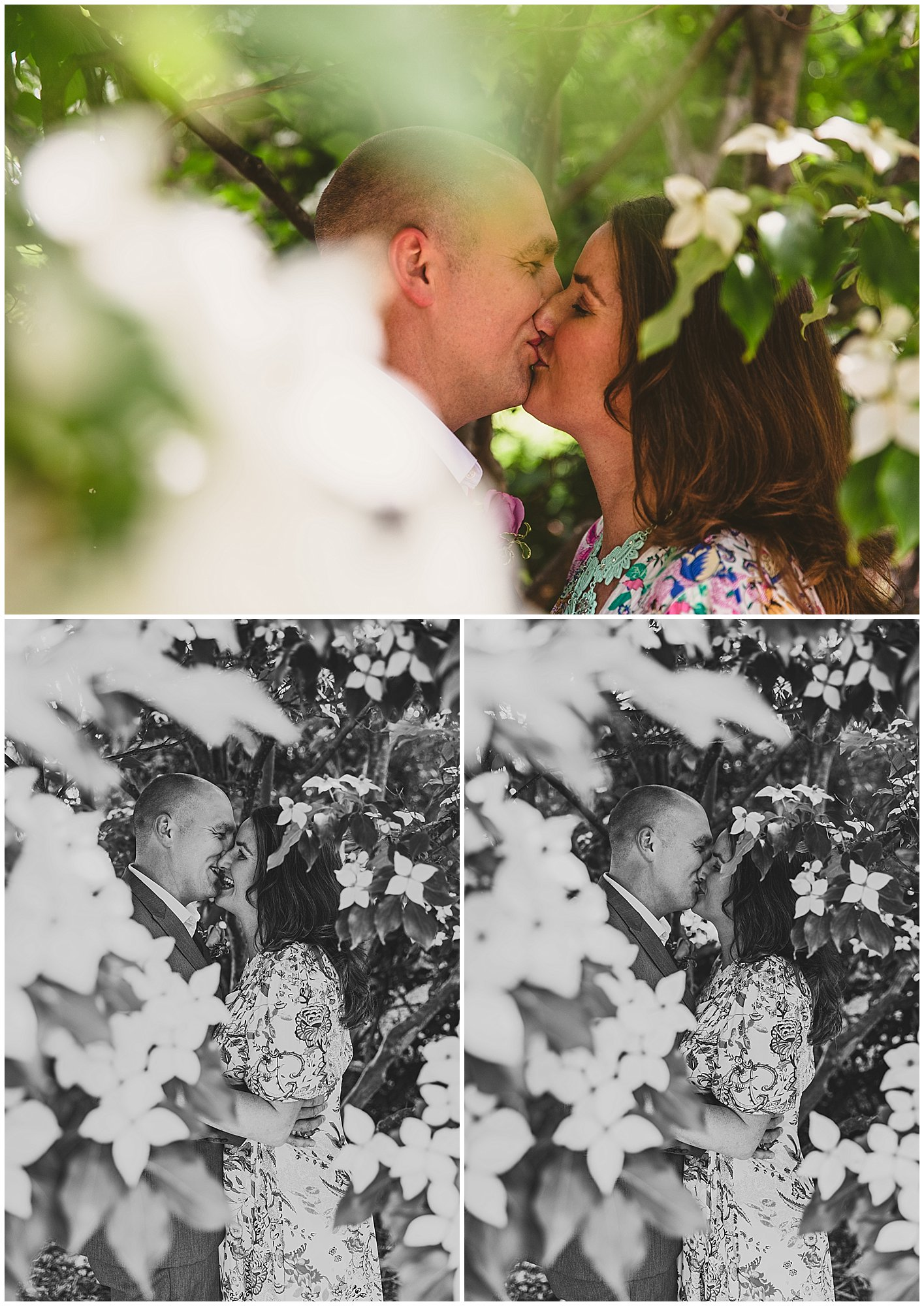 couple kissing in flowering tree