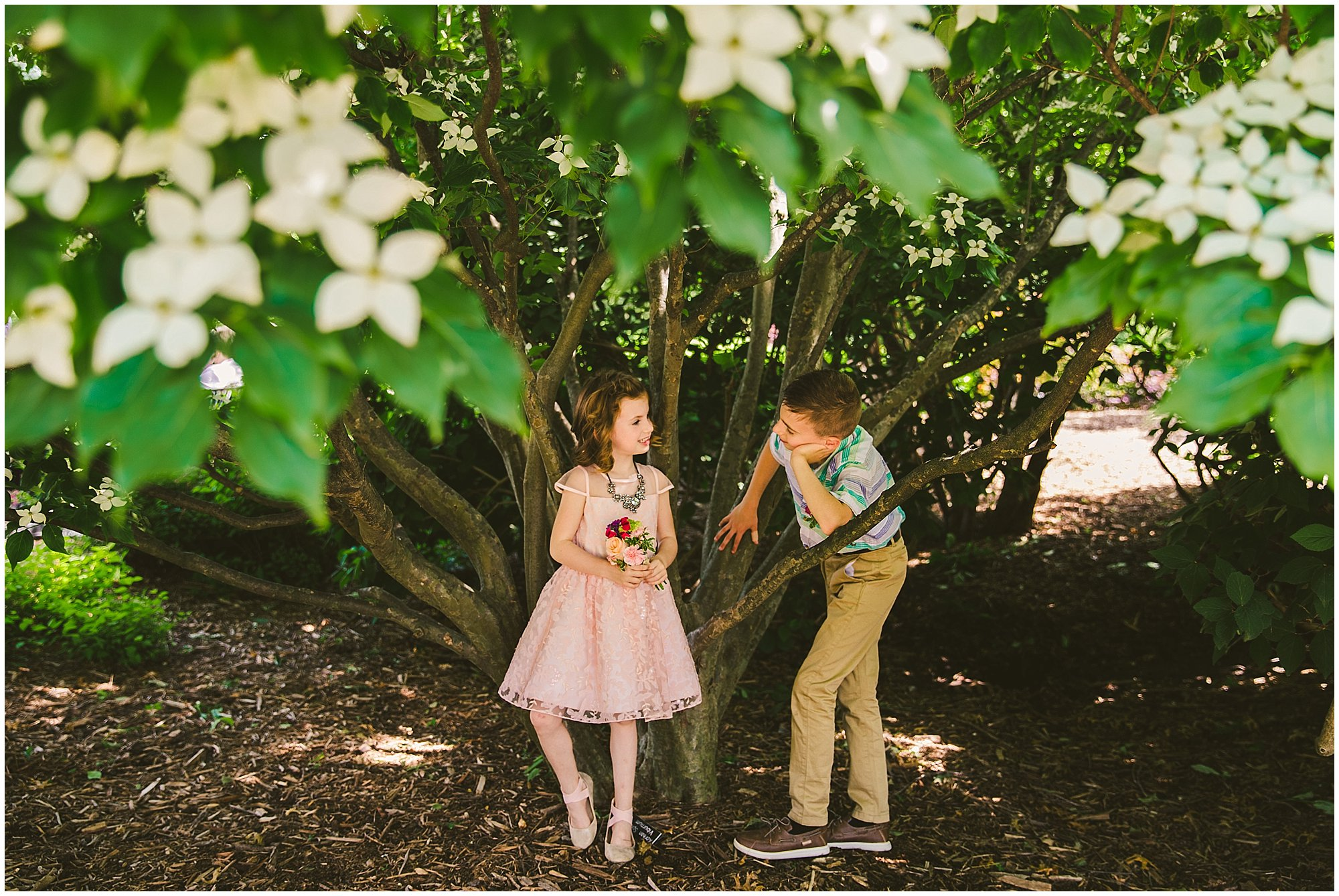 kids under flowering tree
