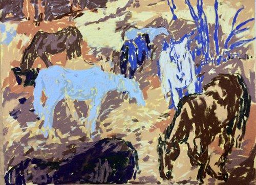 tyga-helme-horses-1.jpg