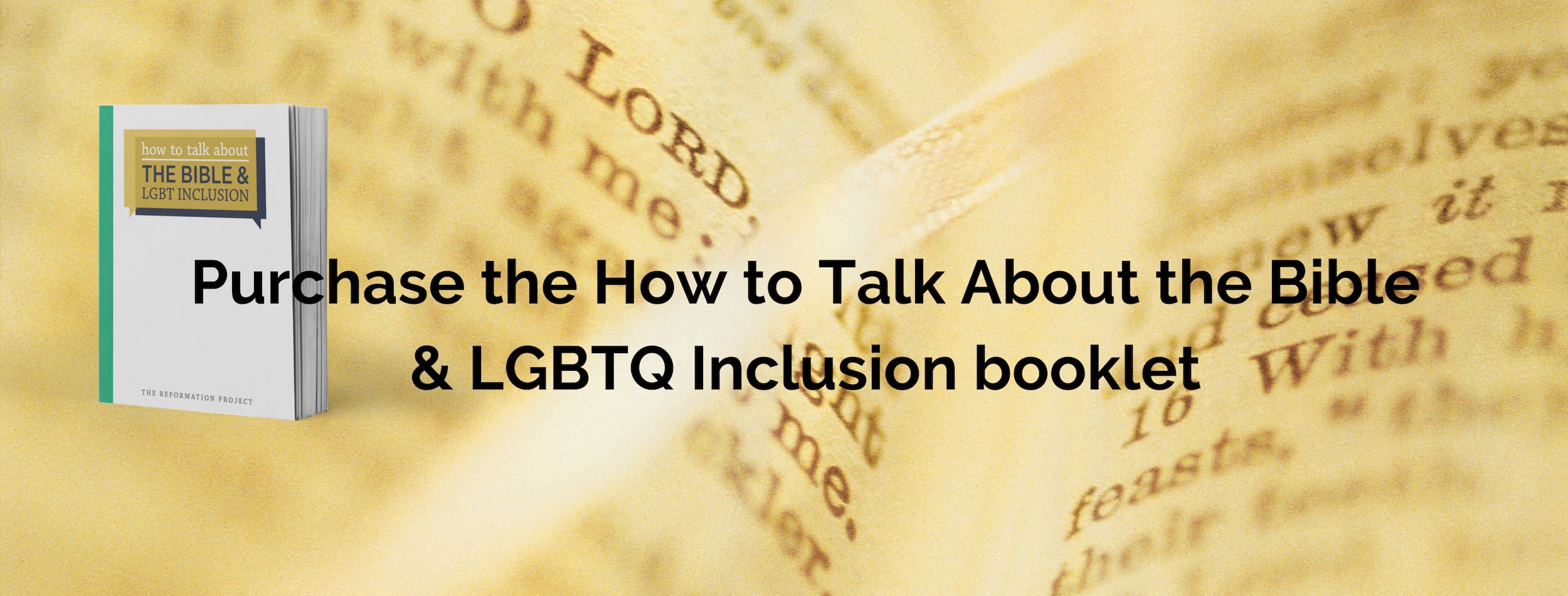 Purchase the How to Talk About the Bible & LGBTQ Inclusion Booklet.png