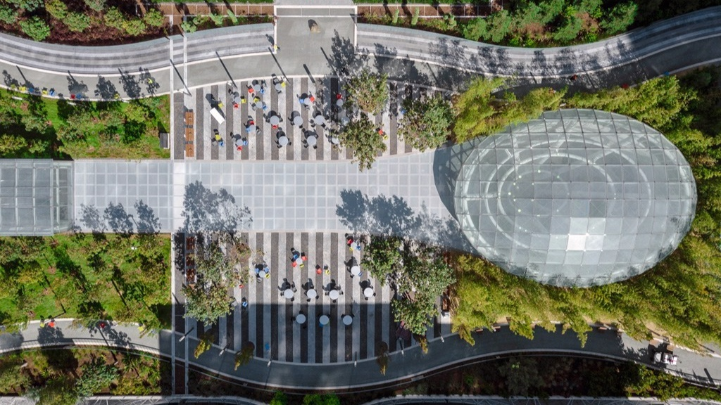 Salesforce Day Care Landscape  - San Francisco California