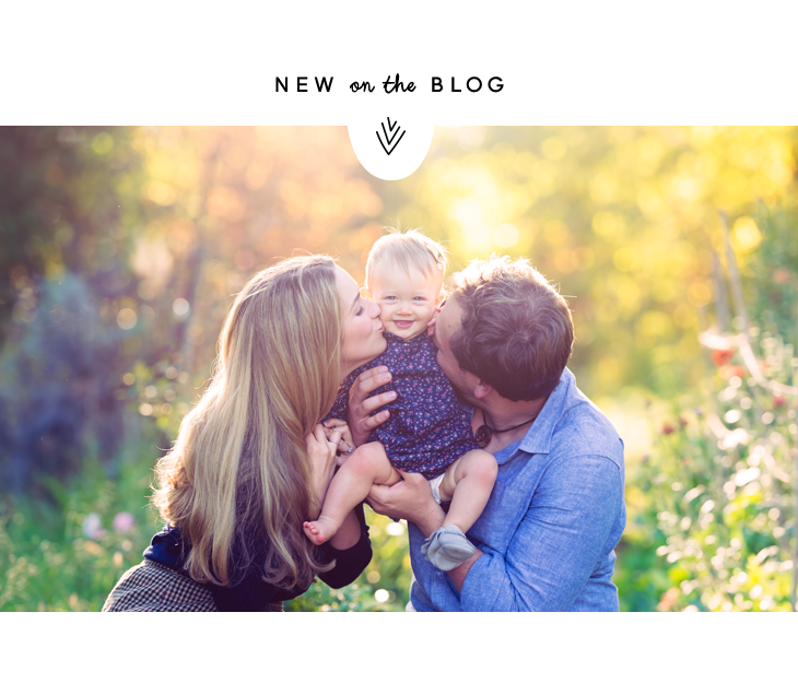 sonomacountyfamilyphotographer.png