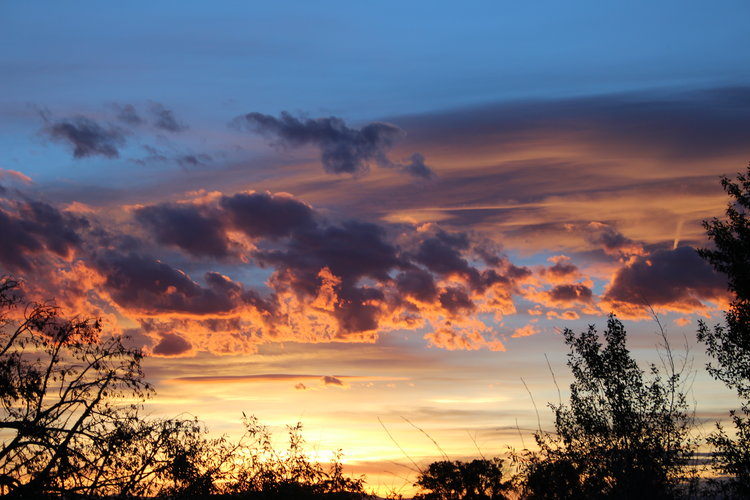 Sunset at Zapata Ranch.jpg