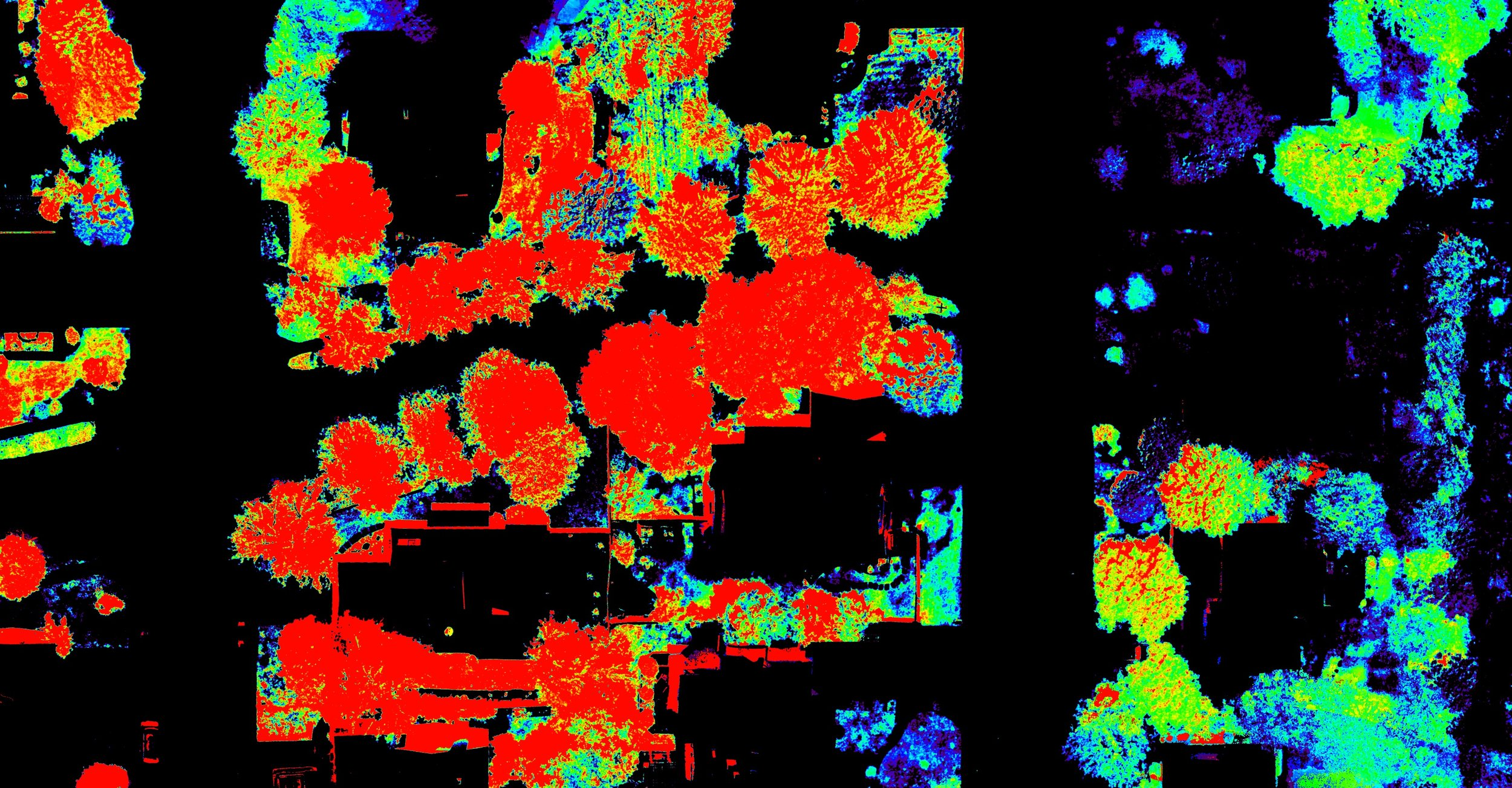 Gunbarrel MSI NDVI Slide Show WWW.jpg