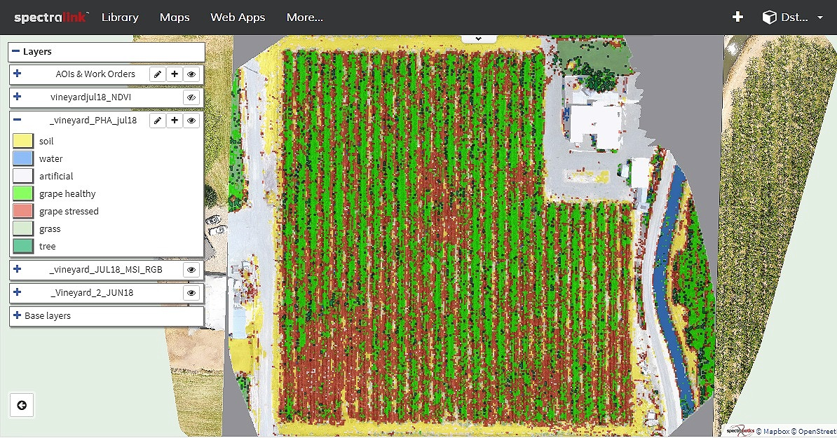 Vineyard health monitoring with machine learning algorithms
