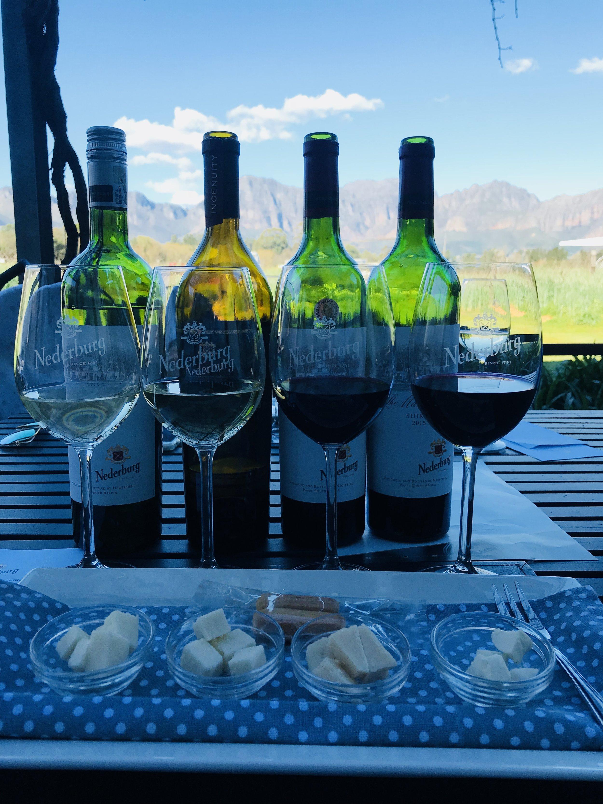 cheese & wine pairing