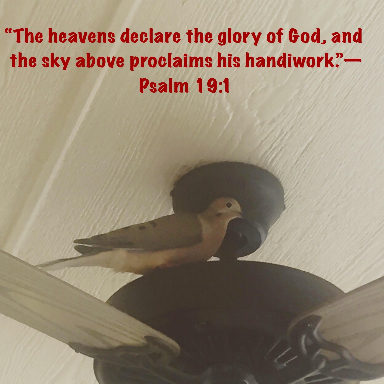 Psalm19:1.jpg