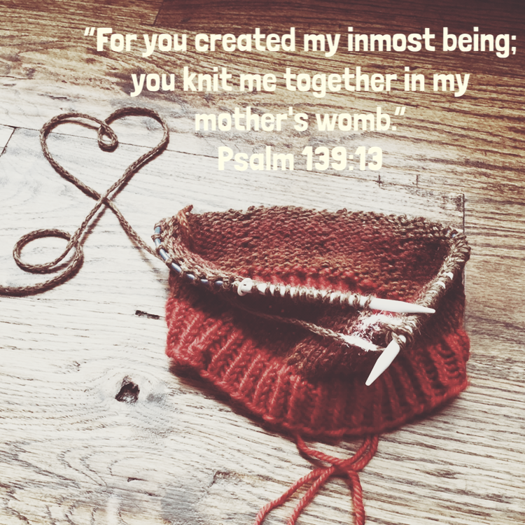 psalm139:13.PNG