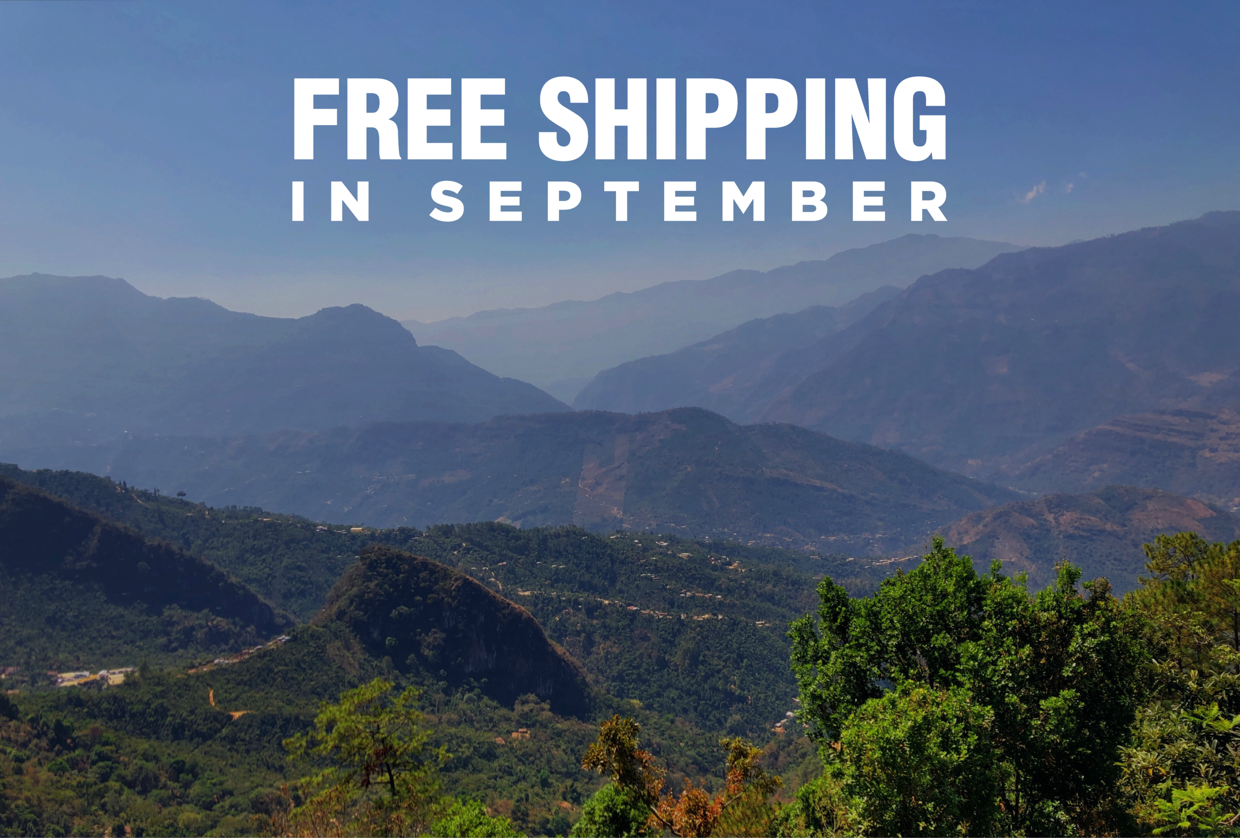 free shipping ad-01.png