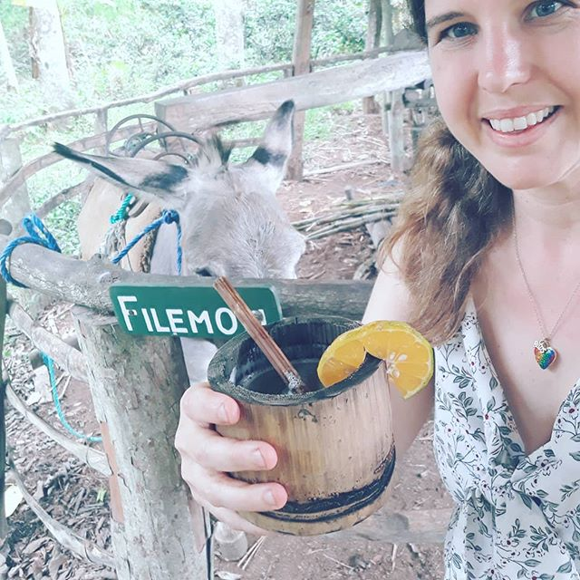 More #veganfoodadventures in the Galapagos! Had a great experience with a lovely donkey named Filamon 🐴 who made sugar cane juice from a trapiche. Add some fresh sour orange and you have a wonderful native Ecuadorian drink. 🍊🍹 Then later there was awesome street vendor food where I picked up a grilled corn🌽 with while out with the locals. I love it here! Me encanta la comida tambien! #ecuador #galapagos #vegantravel #gastrotourism