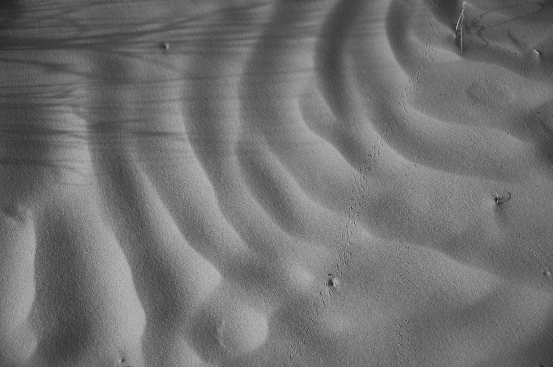 Desert Sand B&W.png