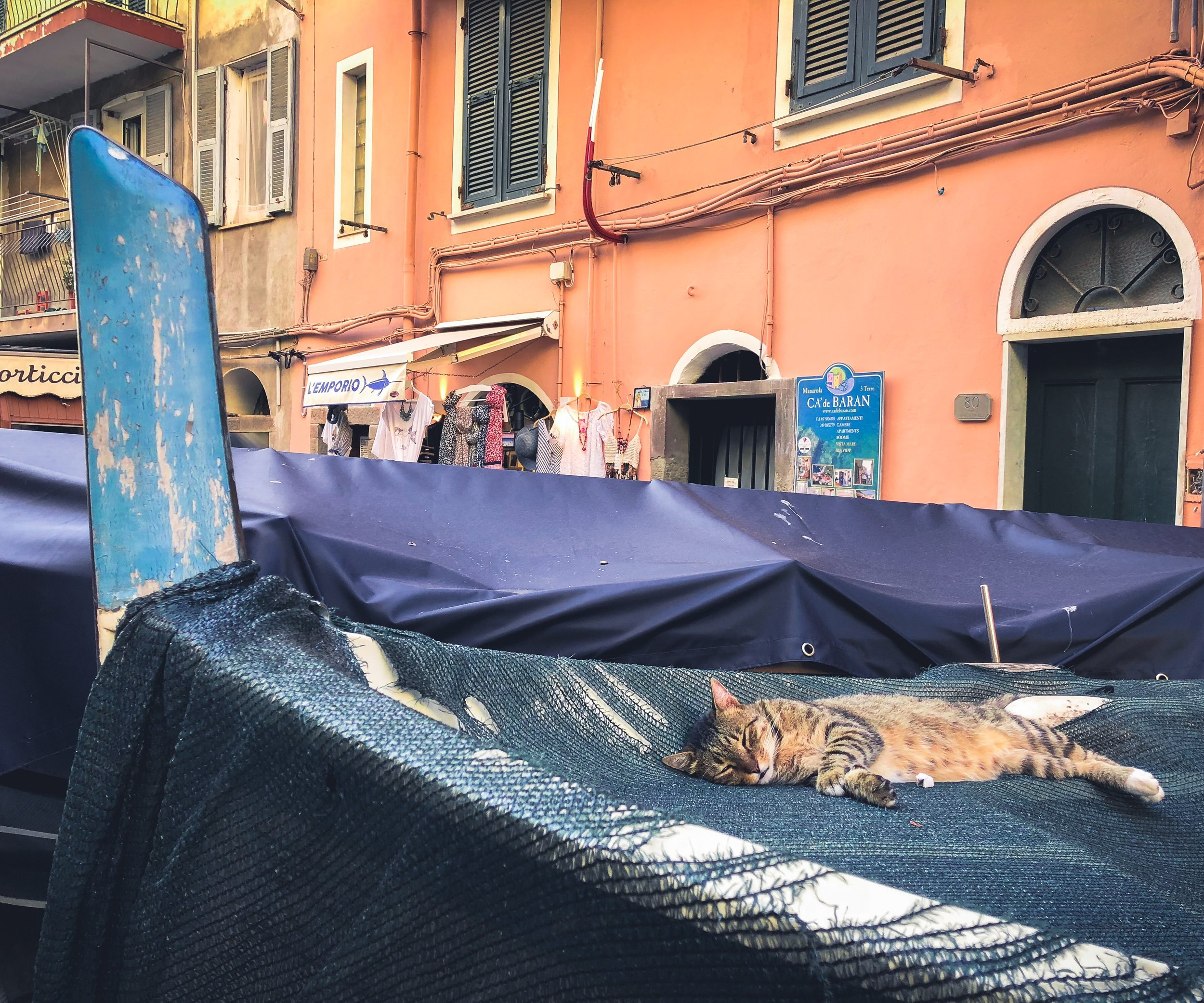 On a stroll through town, we came across this kitty who took it upon itself to take a cat nap inside of a boat… I aspire to be able to sleep anywhere on the spot like this cat!