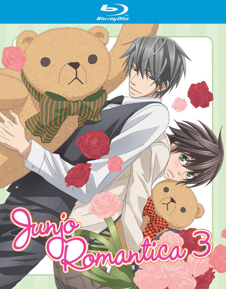 742617181429_anime-junjo-romantica-season-3-blu-ray-primary.jpg