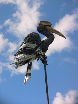 Valkyrie Hornbill