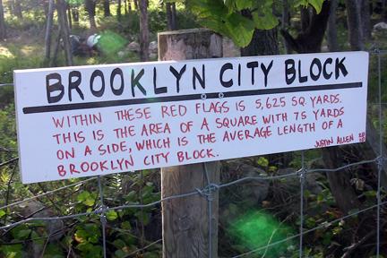 Brooklyn city block