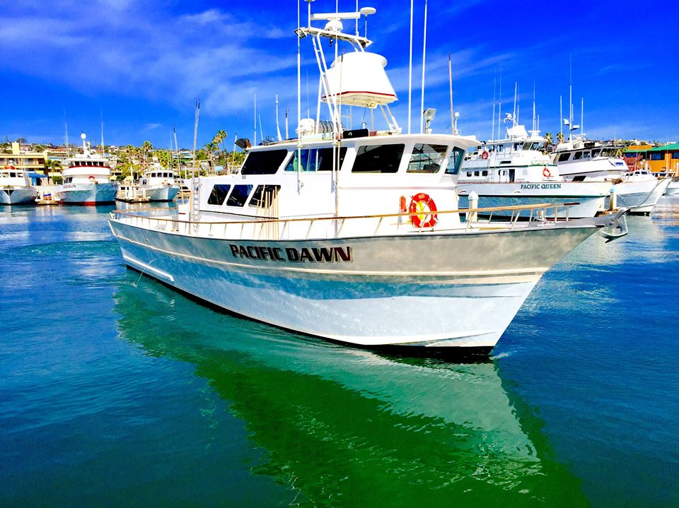 2019 Charters - The 2019 season is almost underway, and you know what that means… MFT charters just in time for summer! We have two trips scheduled so far, and we are looking to add to that list in the near future. Check our events page for more information.