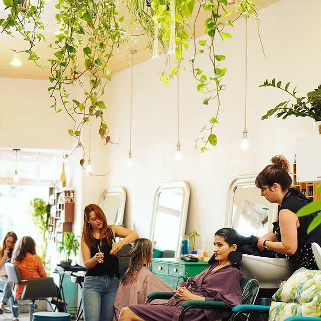 Fridays at Framed ••• Get weekend ready and book your visit at www.framedsalon.com or call 310.998.0021 ••• #hairsalon #hairstylist #losangeles #santamonica #lahair #workflow #salonworkflow #wholebeingbeauty #getframed #framedsalon #selfcare #love #selflove #beautyrituals #smc #highvibehaircare #hairgoals #RelaxandReset #losangelessalon #90405
