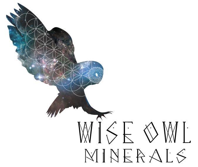 wiseowl.JPG