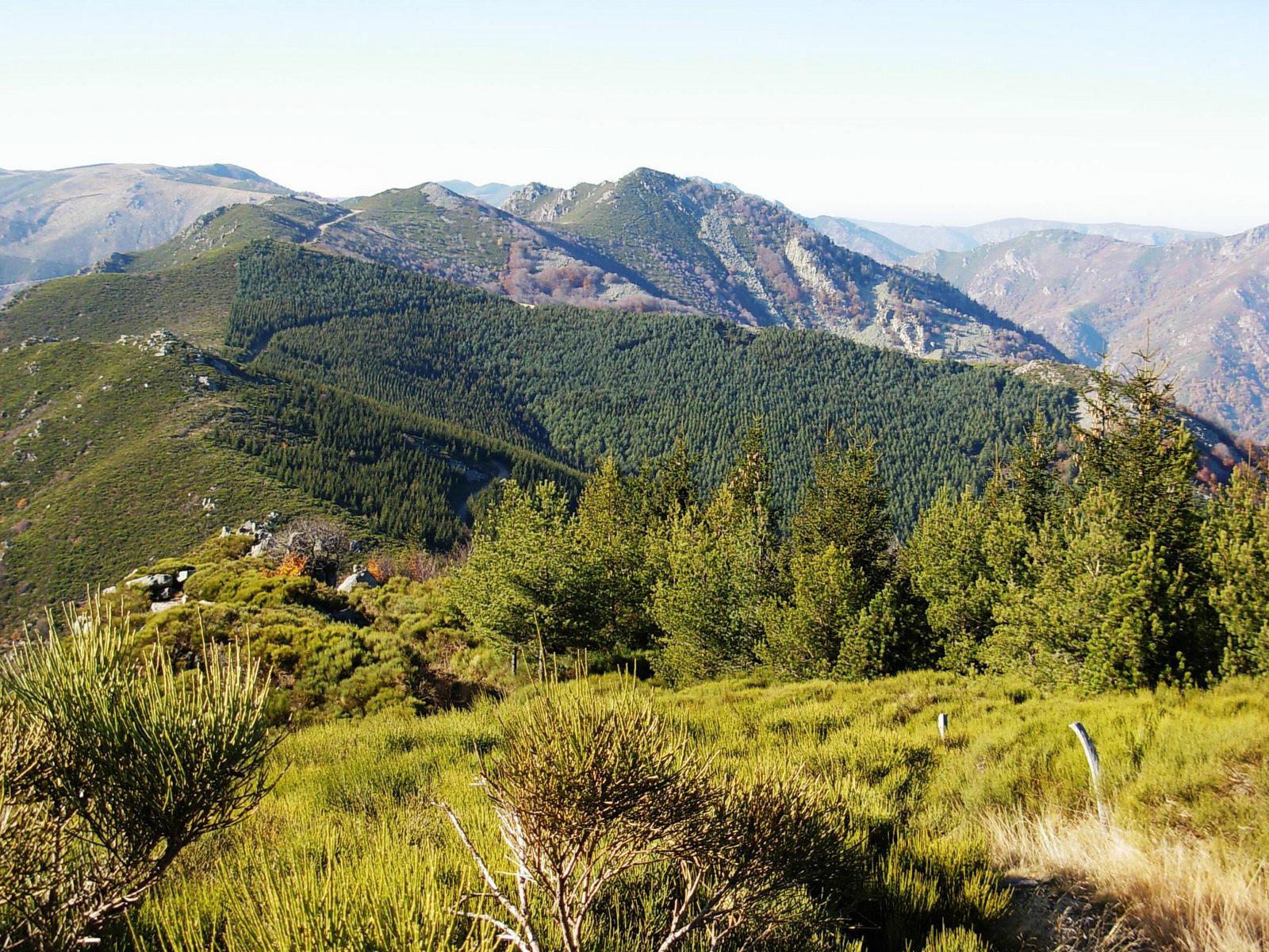 Parc des monts d'Ardèche