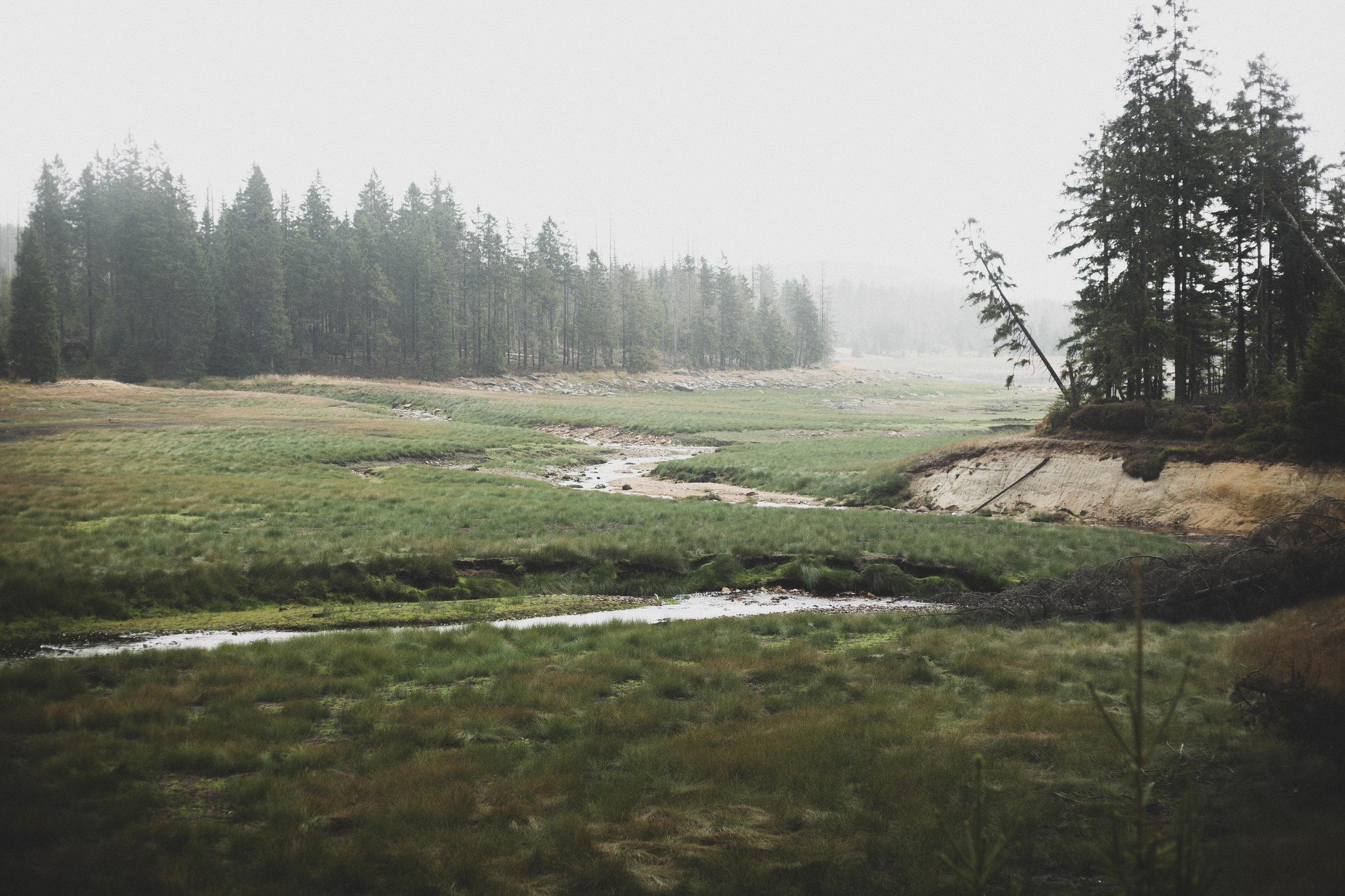 Harz'18-37.jpg