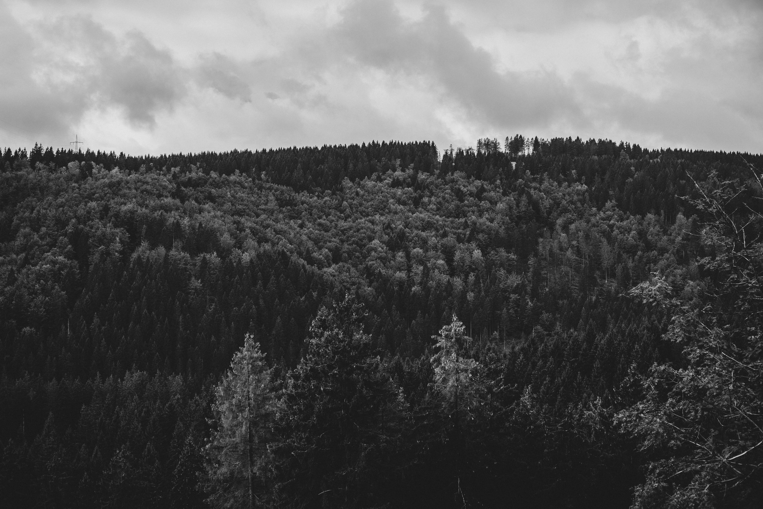 Harz'18-47.jpg