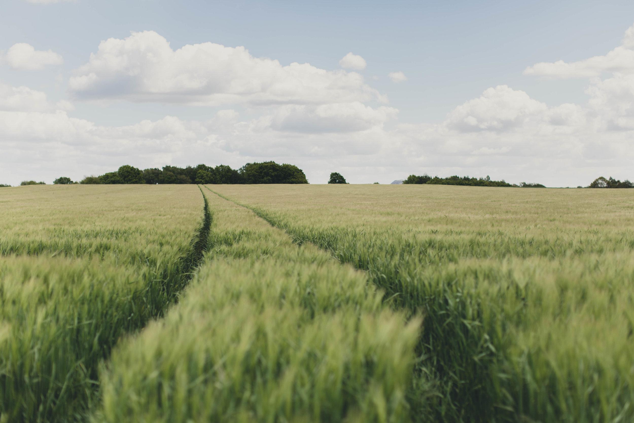 Roadtrip-15.jpg