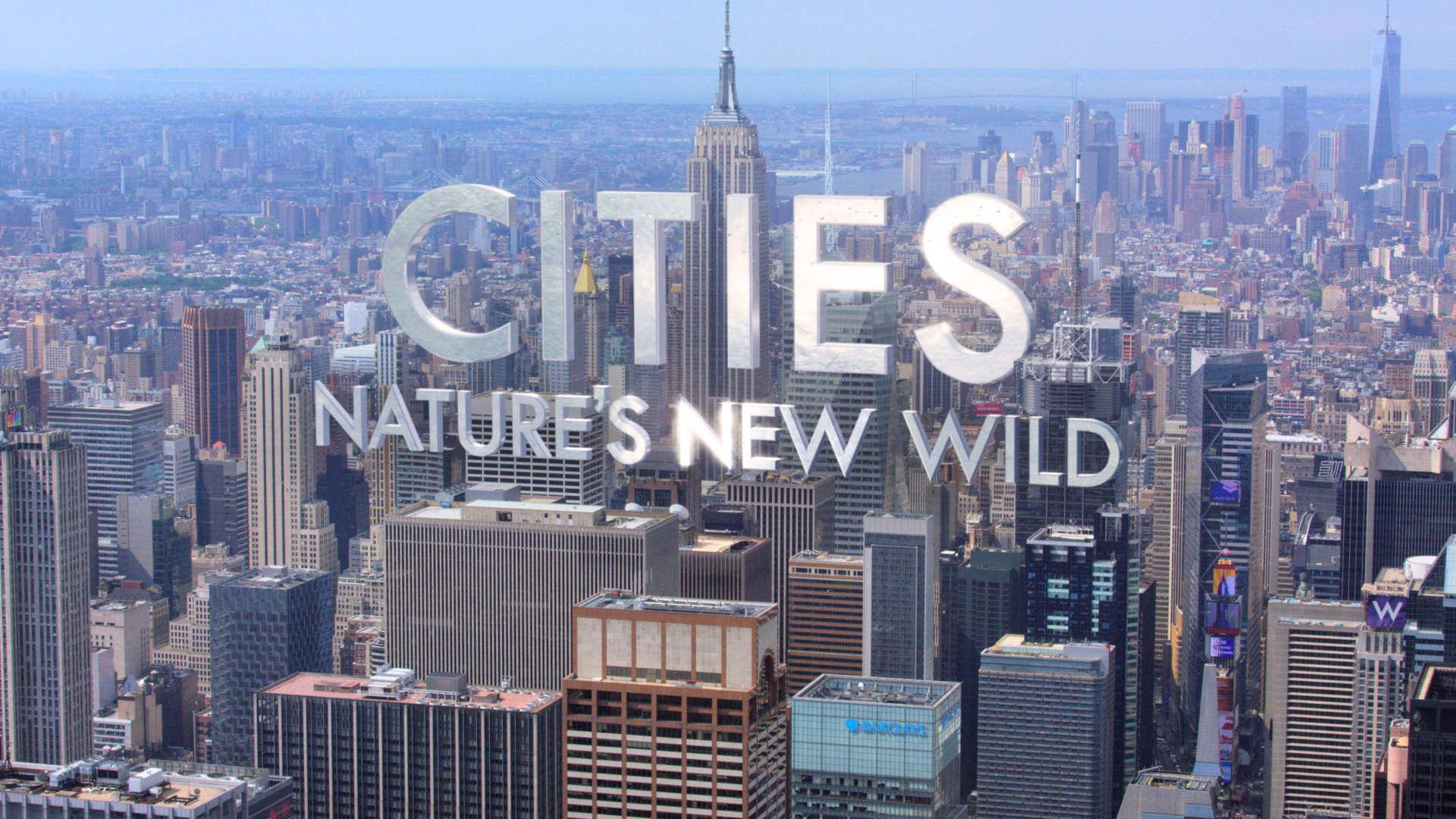 Cites-Natures-New-Wild-trailer-0-00-35-22.jpg