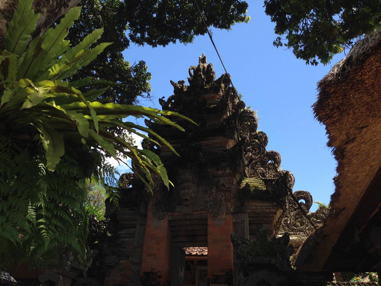 temple run .jpg