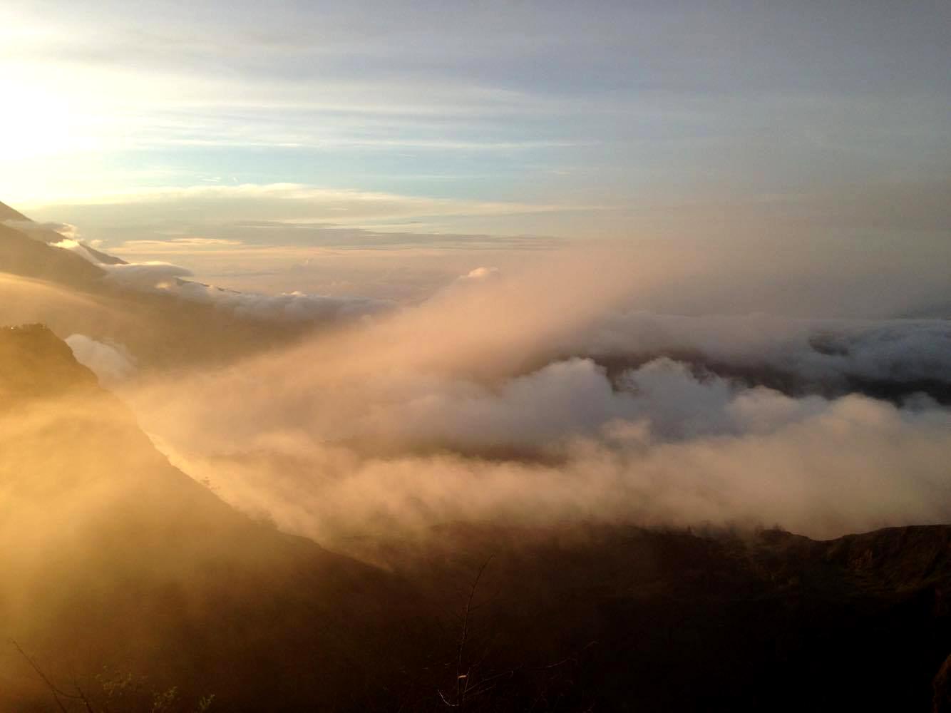 misty humps.jpg