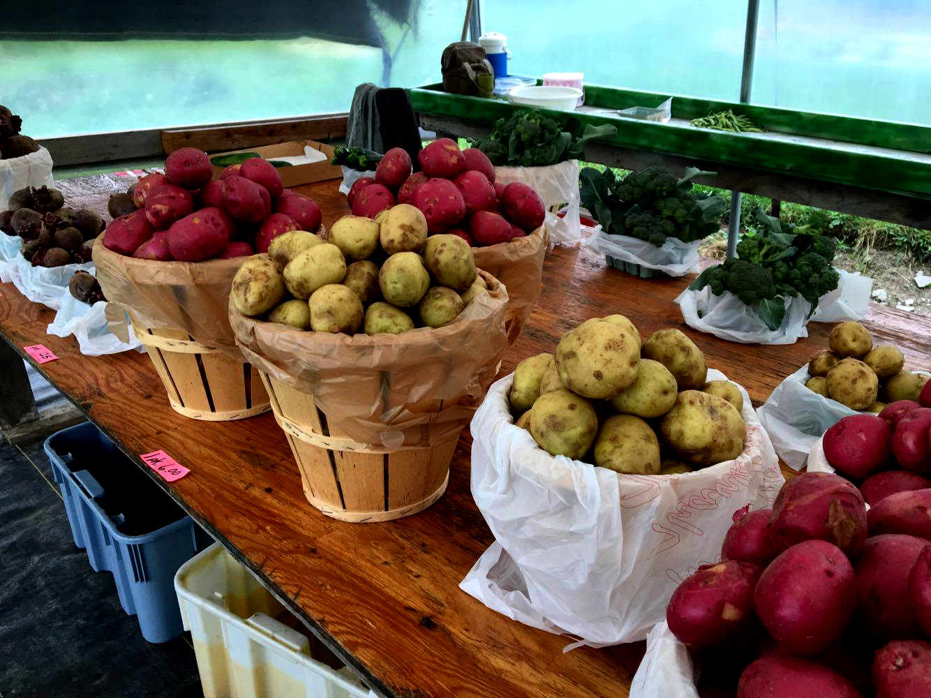 It's fruit and vegetable season! - Take advantage of it, and buy local!