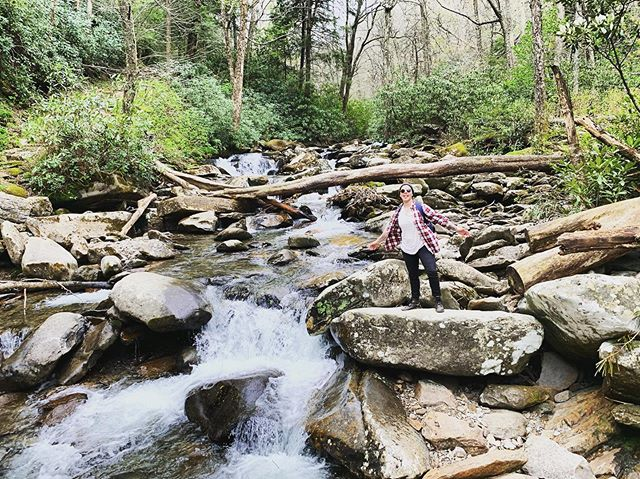 Take me back. . . . . . . #chimneytopstrail #tennessee #smokymountains #hiking #adventure #outdoors #nature
