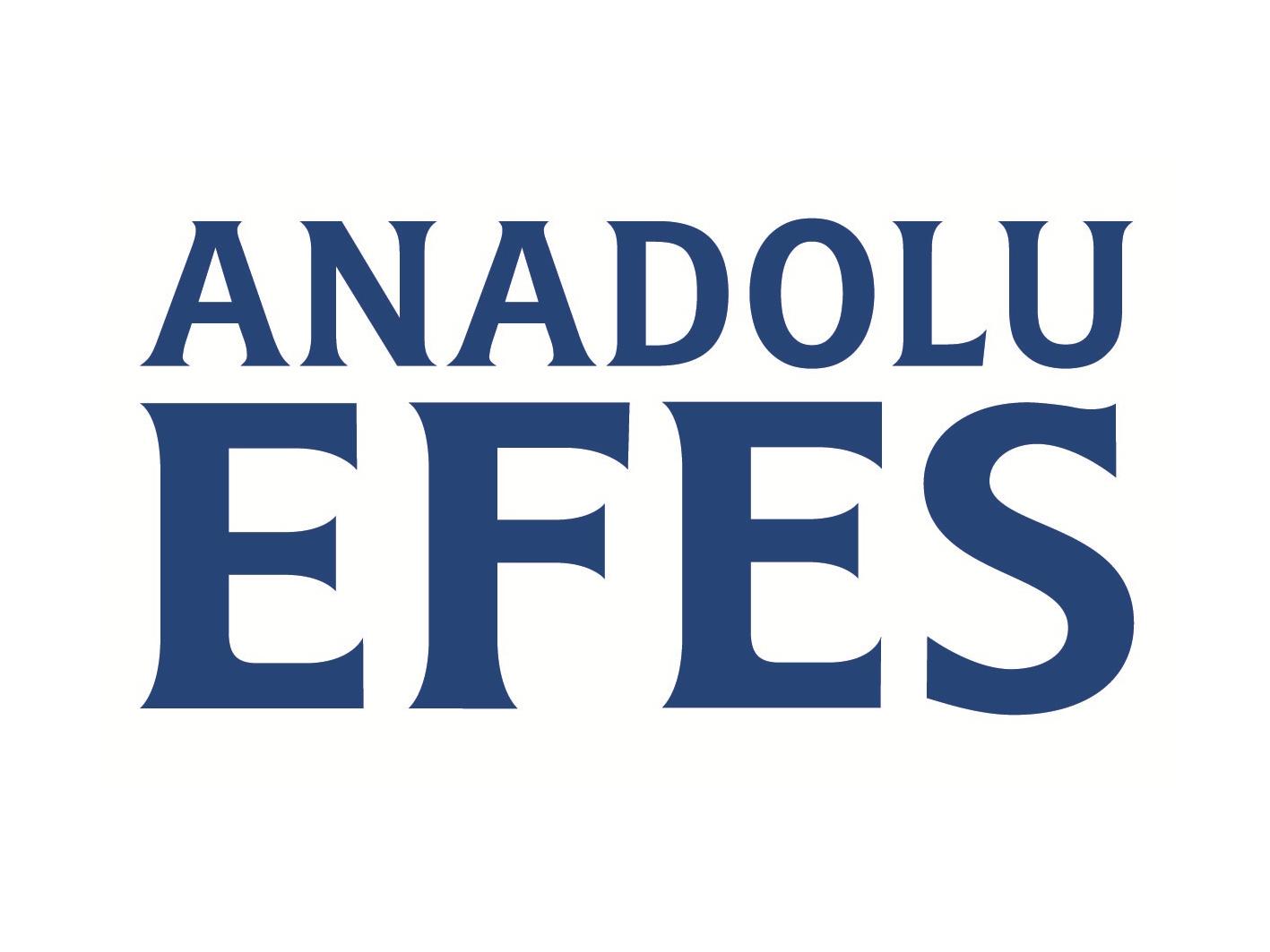 anadoluefes_logo.jpg