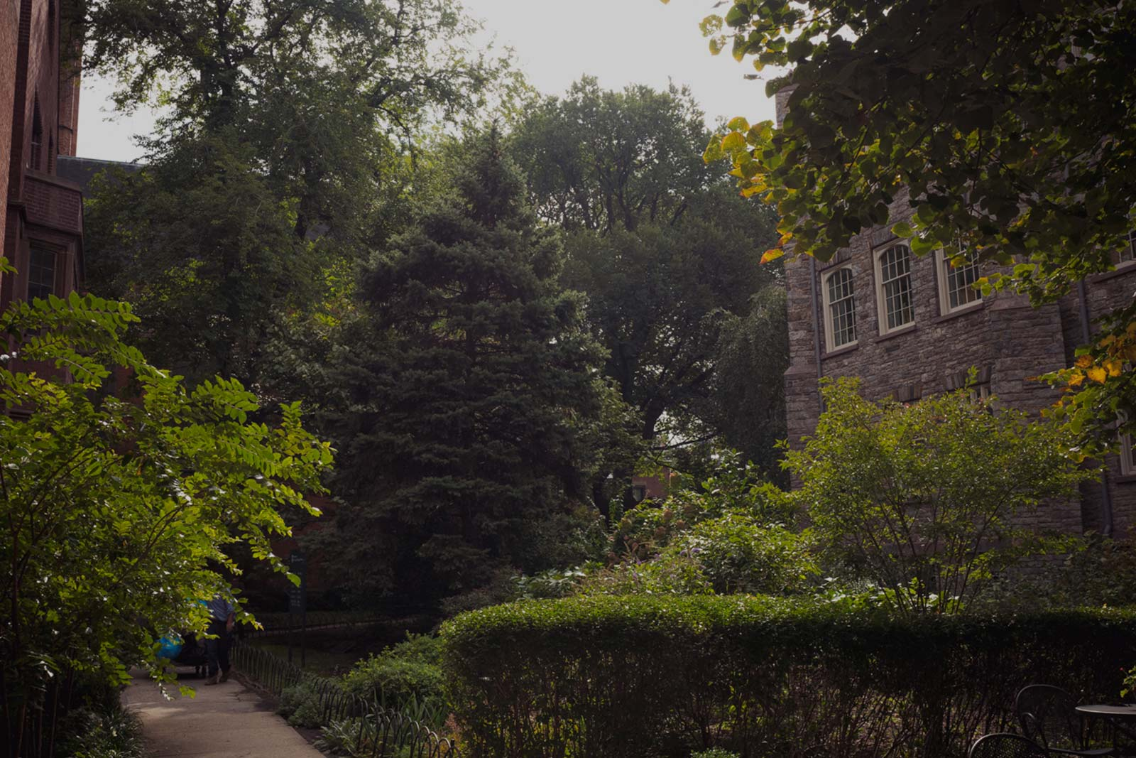 A Beautiful Oasis - Located on the west side of Manhattan in New York City, the General Theological Seminary is frequently noted for the beauty of the gardens on its campus, called the Close. The seminary's Close is surrounded by a row of neo-Gothic buildings and tree-shaded lawns uncharacteristic of its urban setting. Here, students and faculty live together in community — a highlight of the formational experience that General Seminary offers.