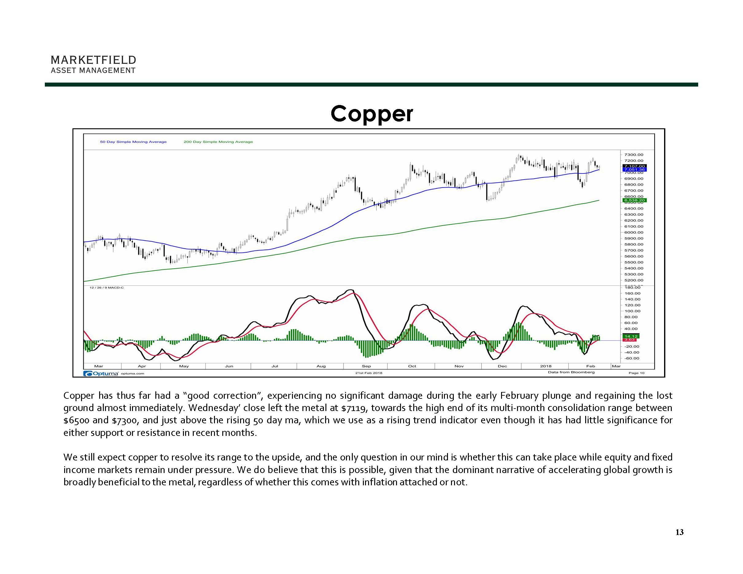 Marketfield Weekly Speculator 02-22-18_Page_13.jpg