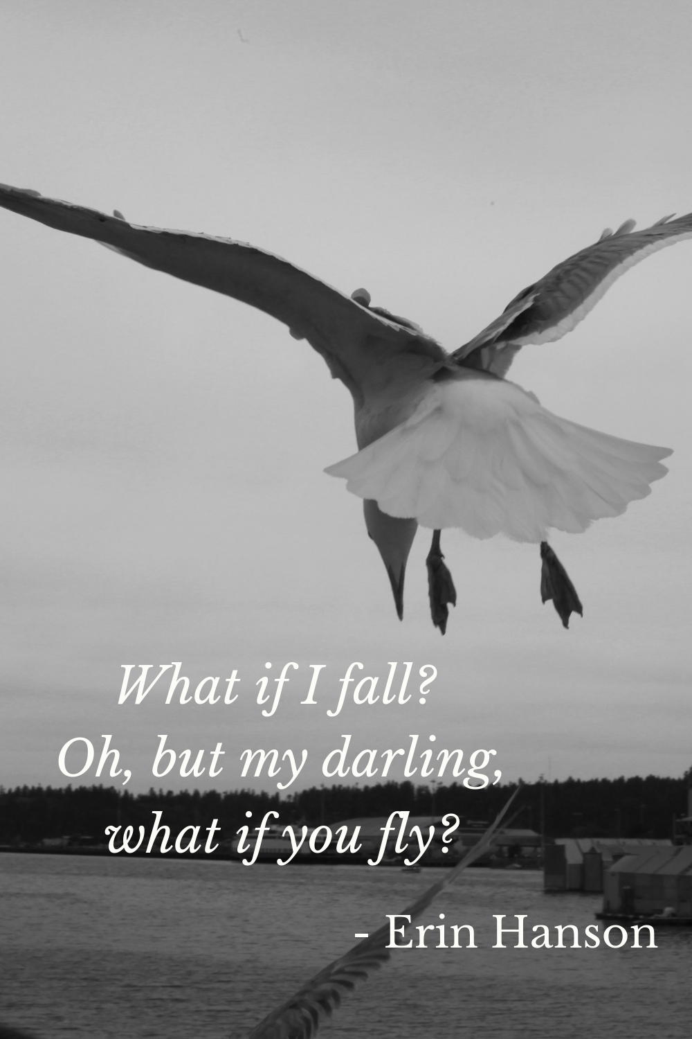what if you fly.png