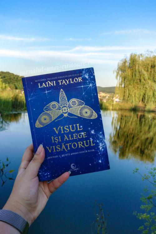 Coperta romanului Visul își alege visătorul la munte, lângă un lac
