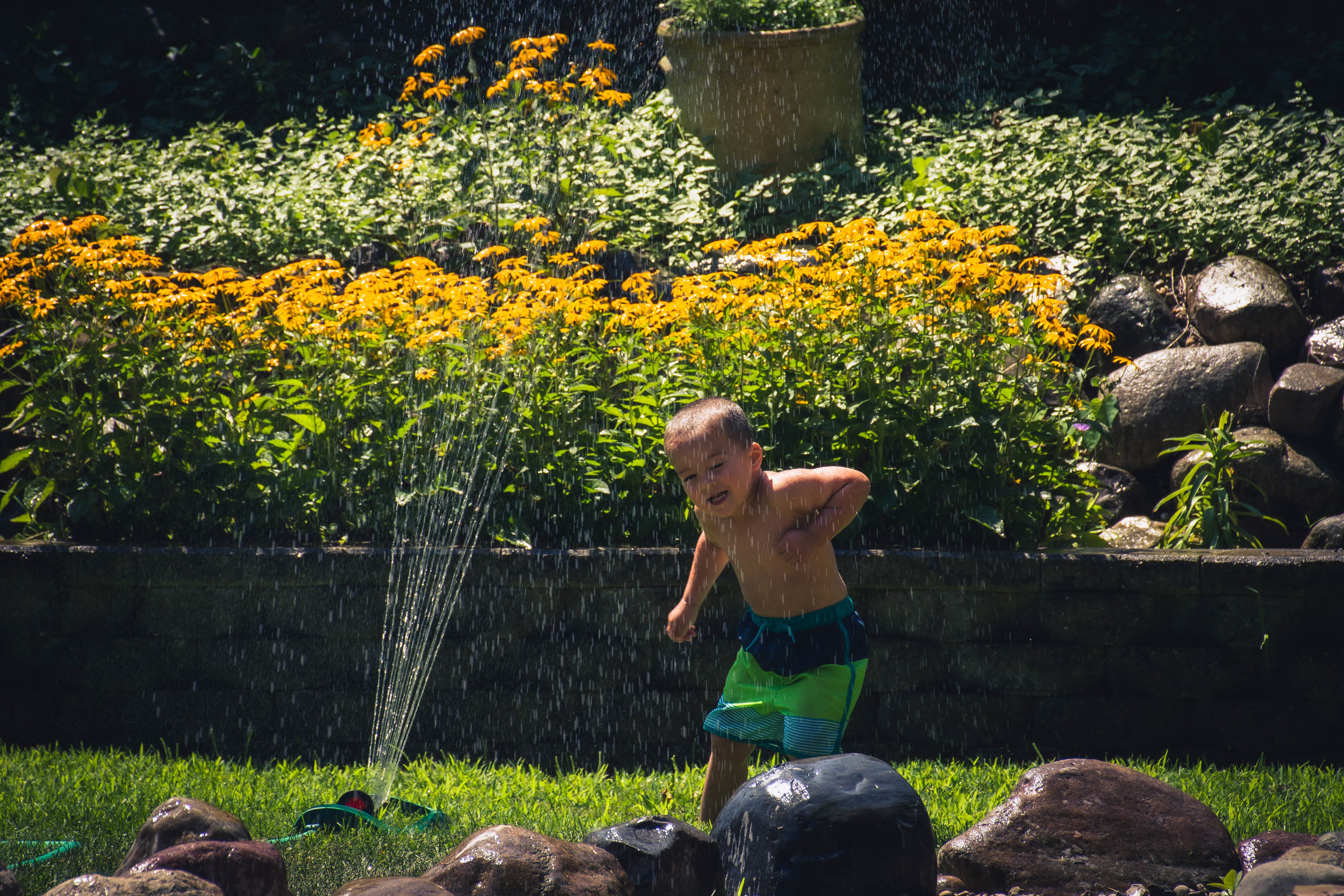 …..and just some good old fashioned back yard fun in the sprinkler.
