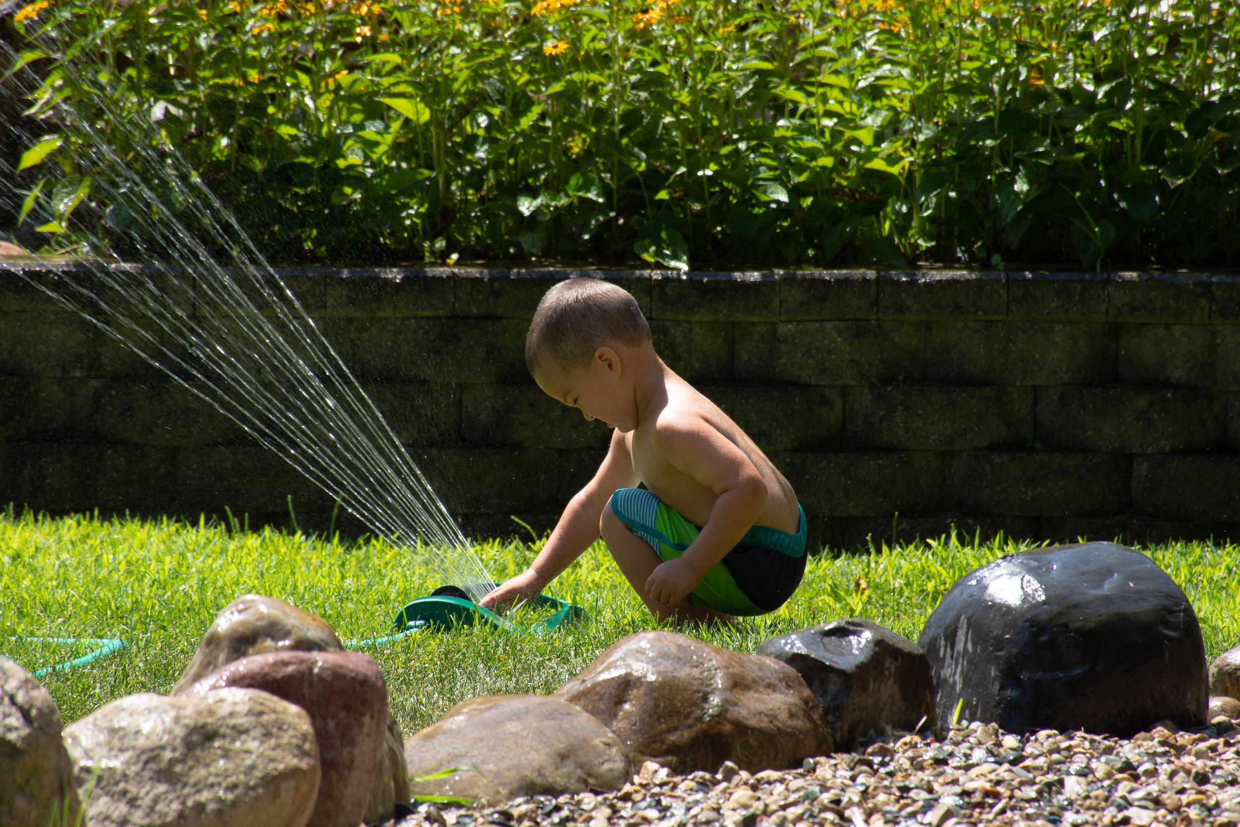 Backyard fun 2.jpg