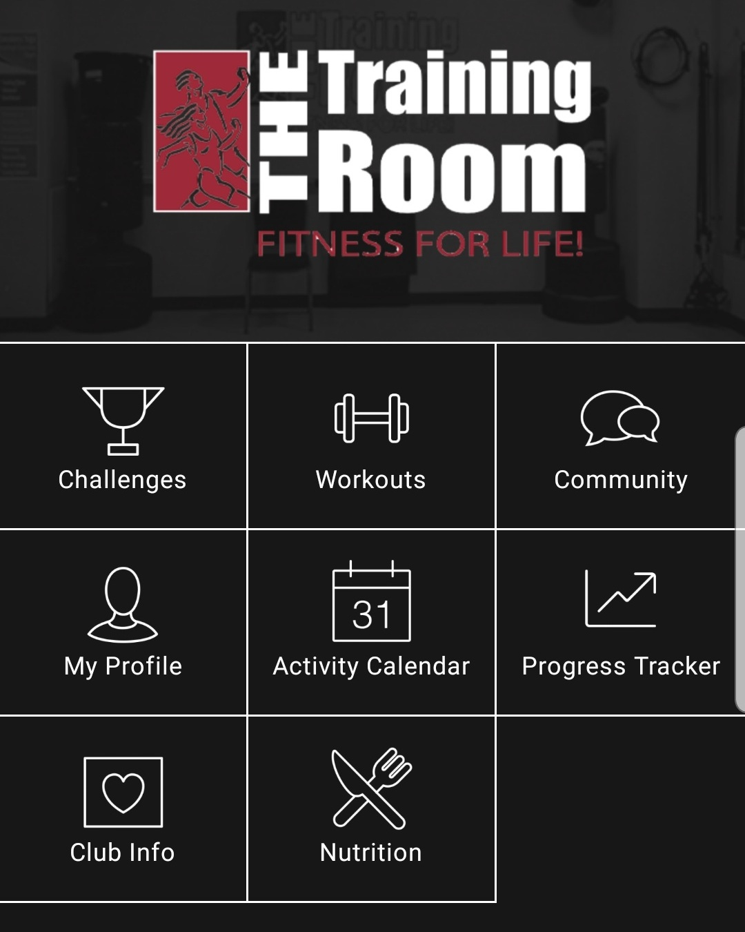 Personalized Wellness - On-line support to encourage you on your fitness journey.Includes workout plans, challenges, progress tracker, and nutritional support.