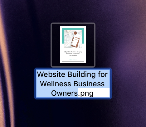website building for wellness business owners