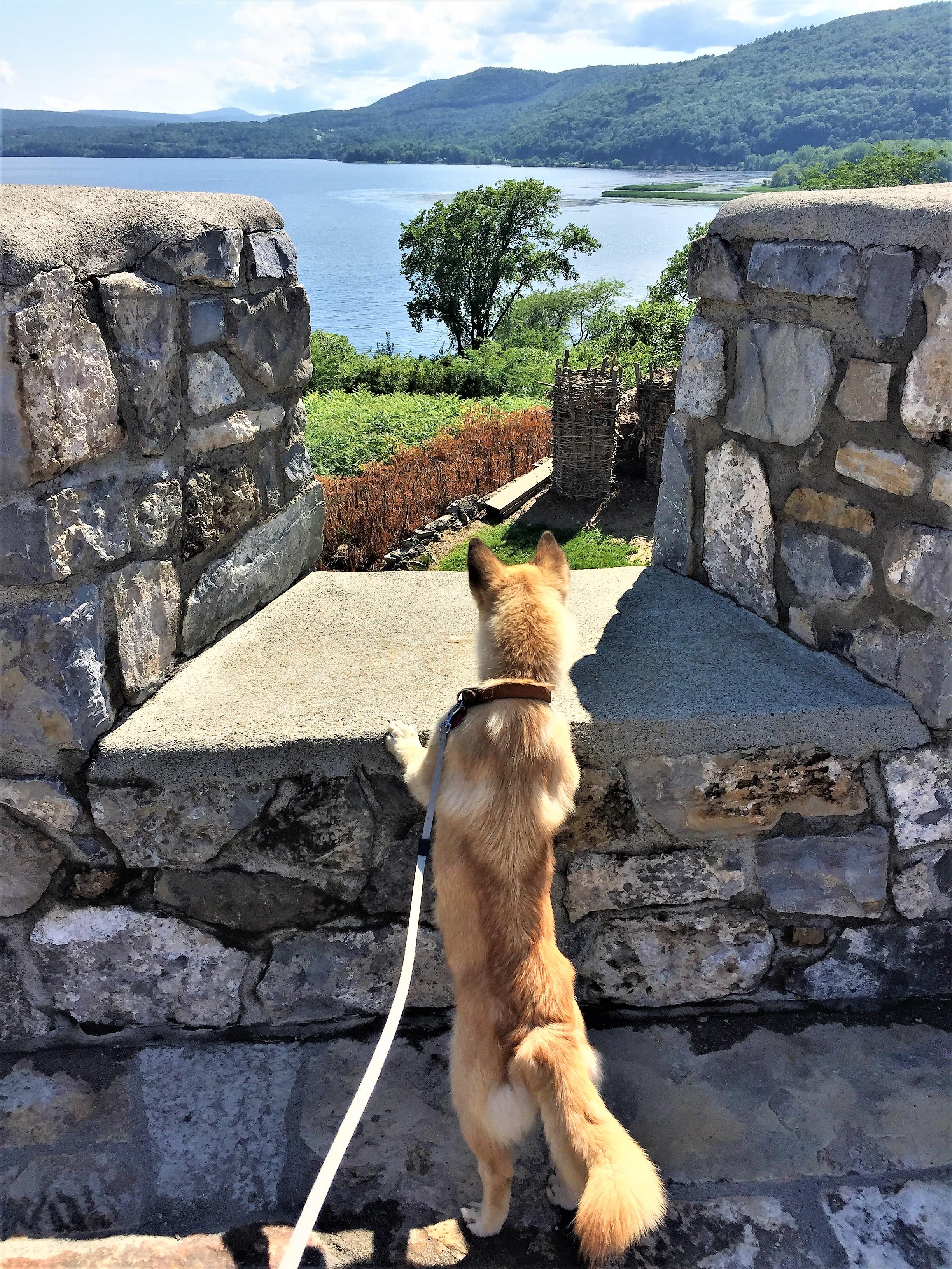 Mabel @ Fort Ticonderoga