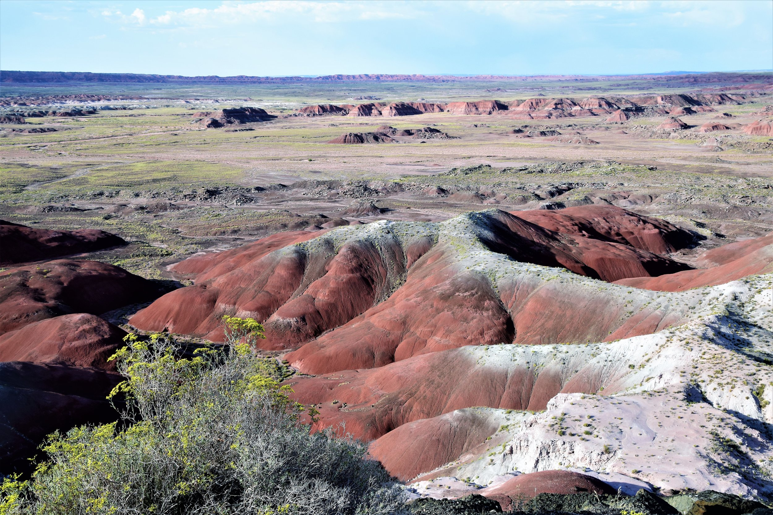 Petrified Forest NP, Arizona