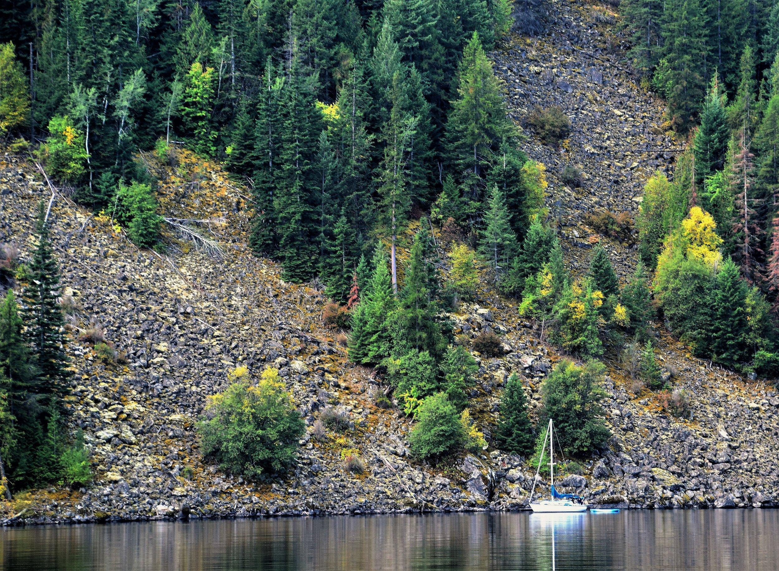 Idelwilde Bay.Farragut State Park,Idaho