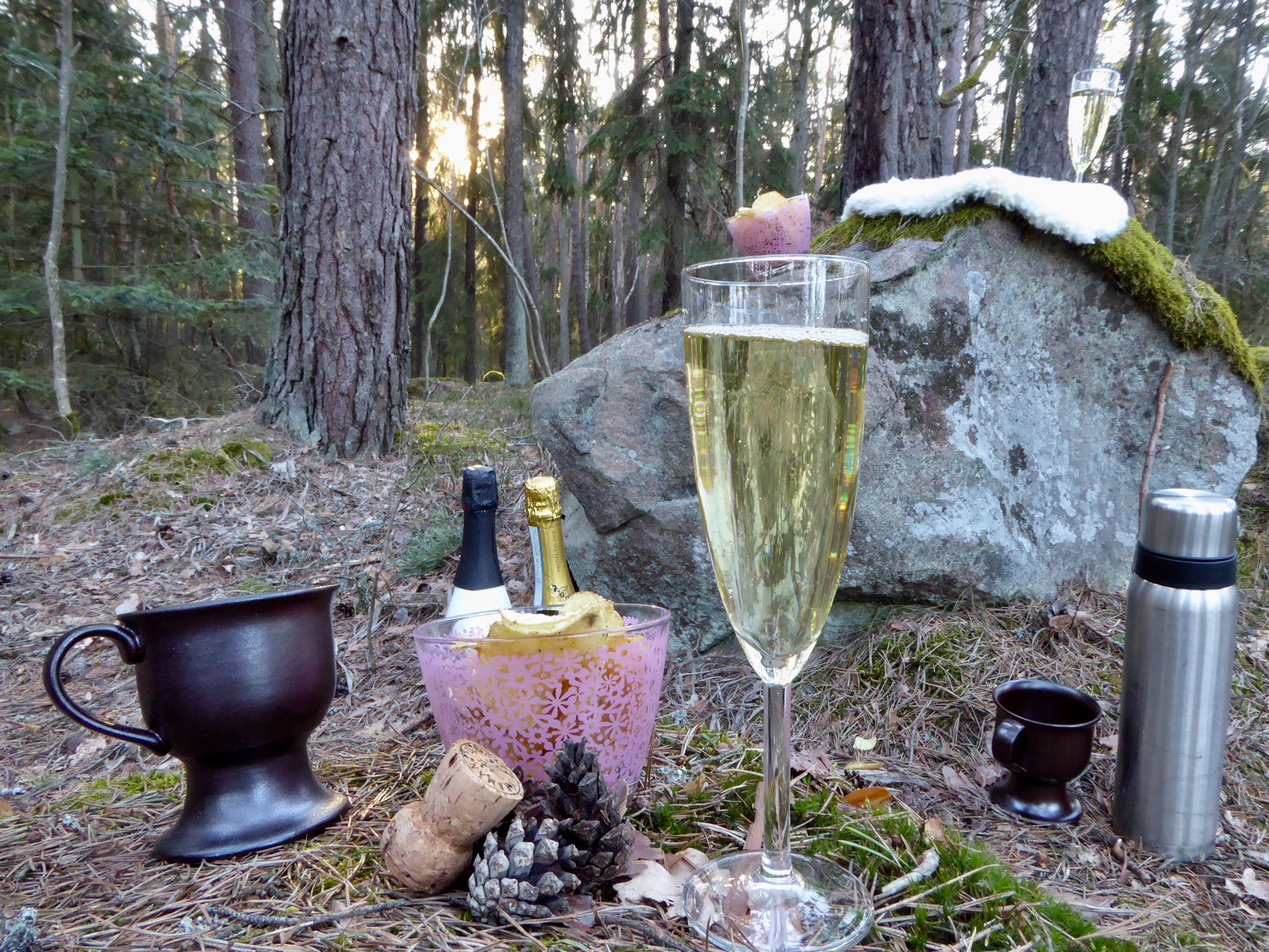 AW i skogen. Foto: Jenny Rosen, Djurgårdens Ekolyx.