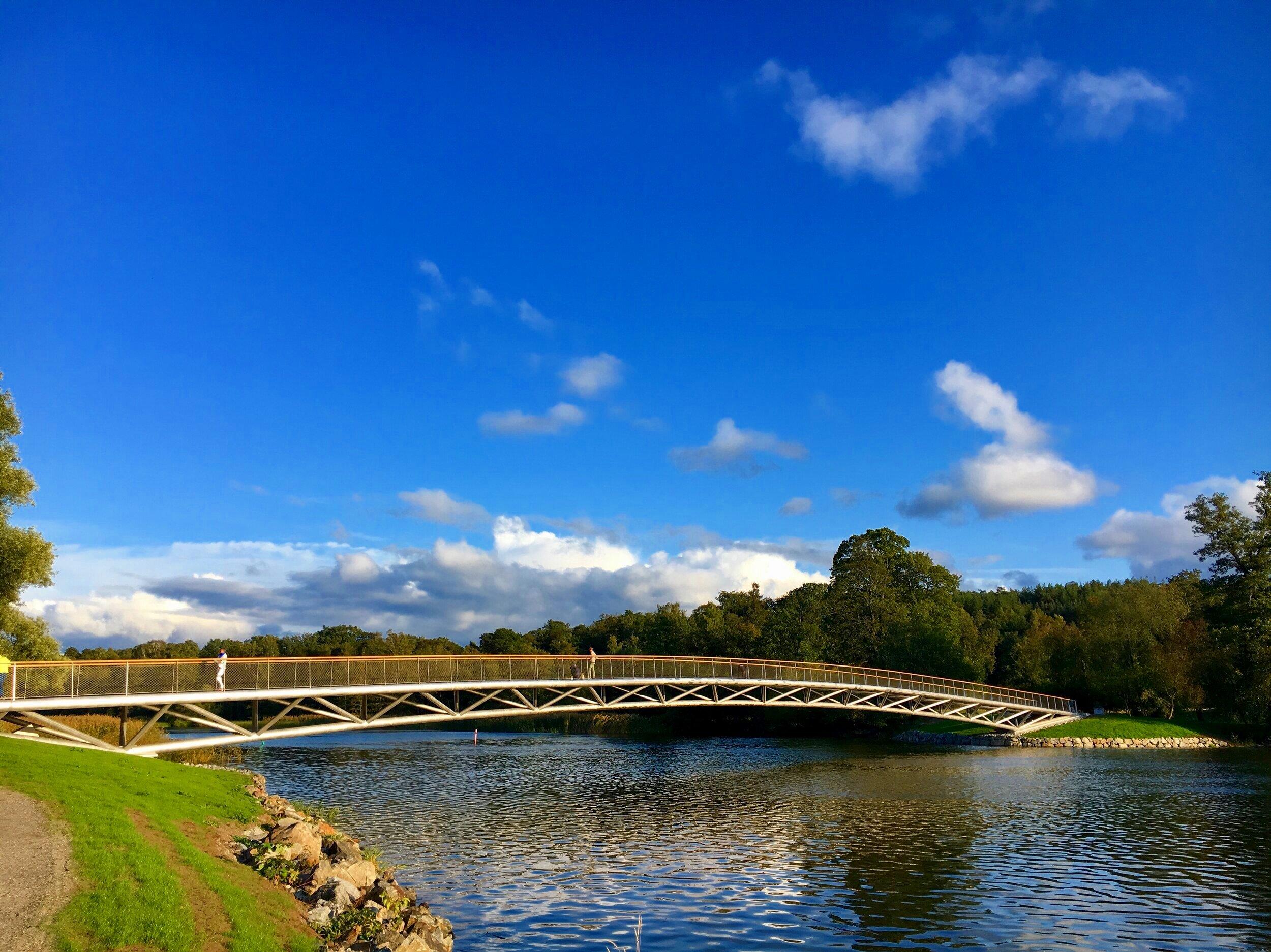 Folke Bernadottes bro. Foto: Jenny Rosen, Djurgårdens Ekolyx.